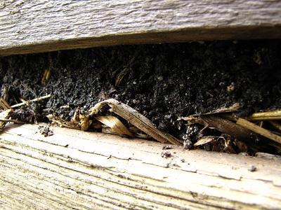 Compost tussen de planken