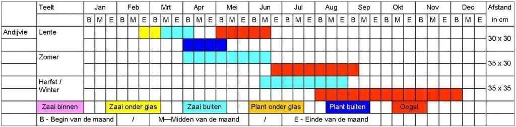 Andijvie tabel
