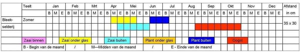 Bleekselderij tabel