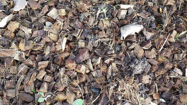 bodembedekking-dec-16-kokosvezel