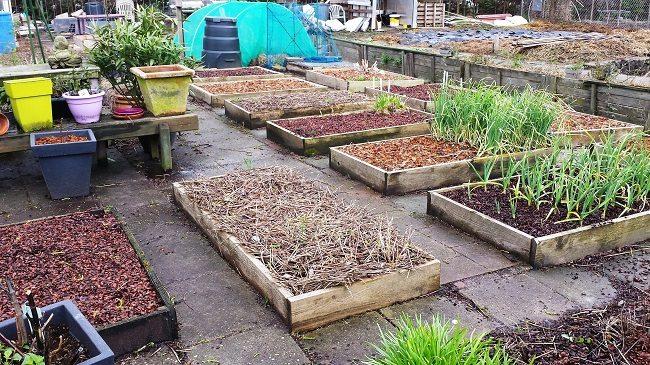 de-nieuwe-tuin-voorjaar-2016