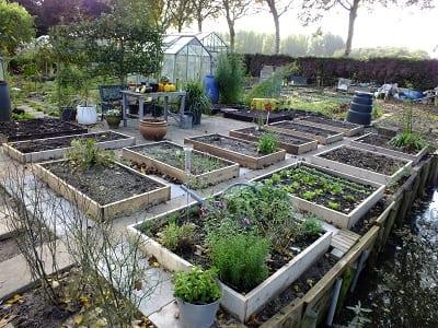 De nieuwe tuin 24-10-13