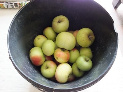 Inmaak appeltaartjam 3
