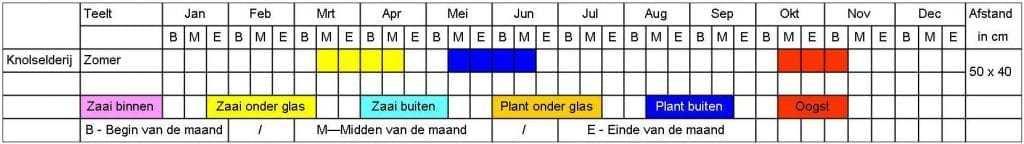 Knolselderij tabel