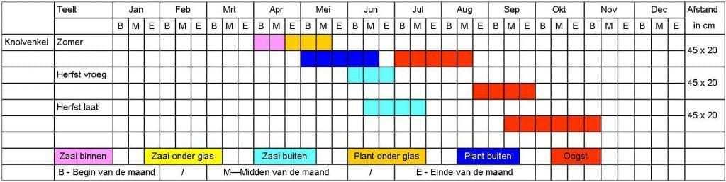 Knolvenkel tabel
