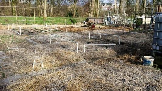 Overzicht tuin 27-03-15