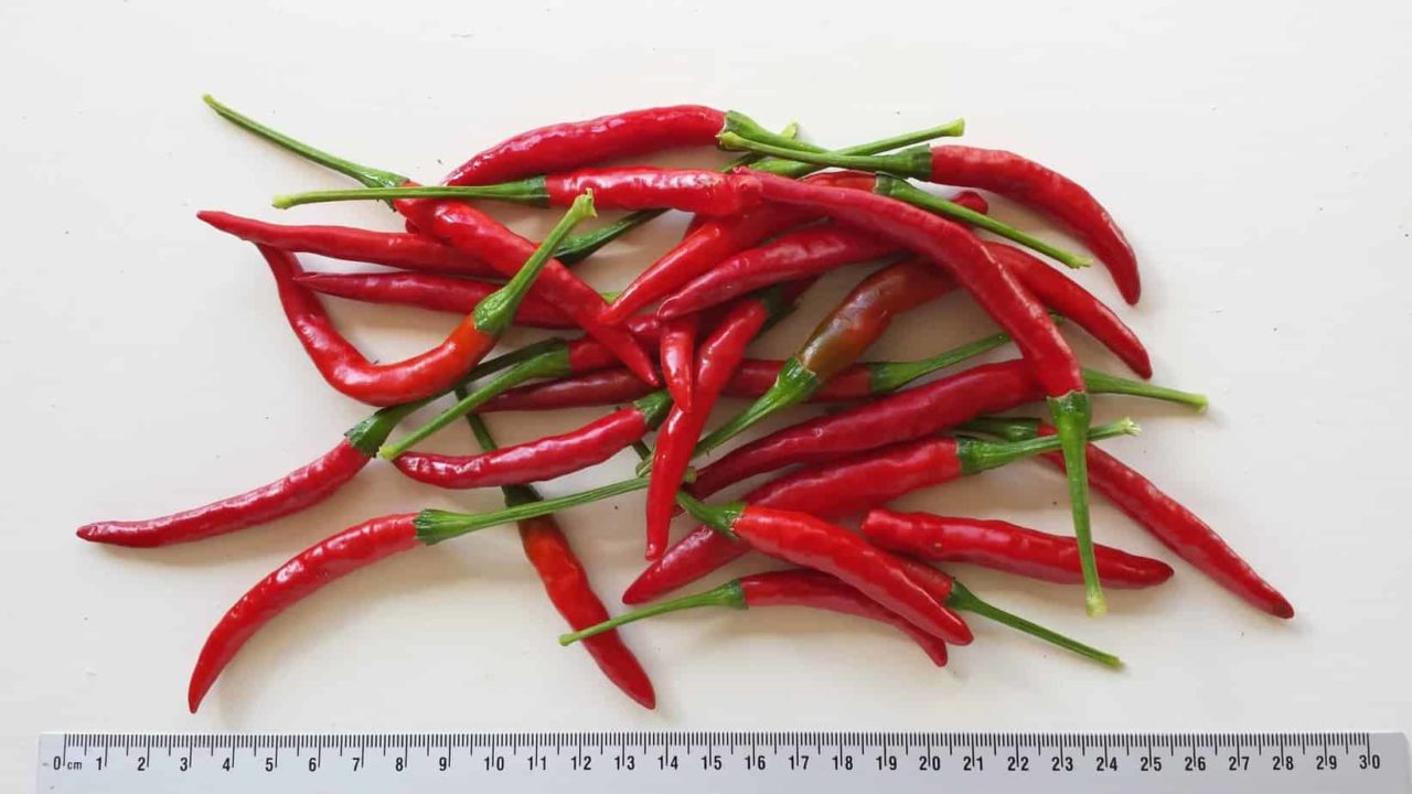 Thai Red Hot