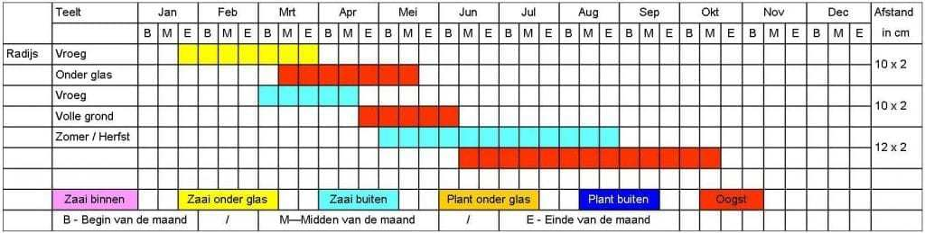 Radijs tabel