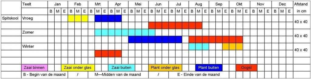 Spitskool tabel