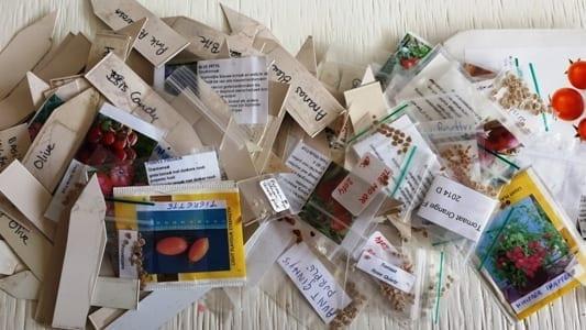 Tomaten zaden en labels