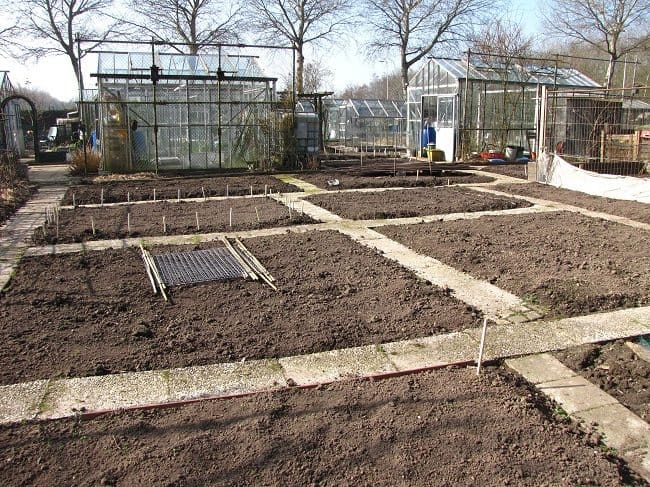 Mest diana 39 s mooie moestuin for Diana tuin